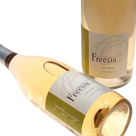 Mas d'Espanet - IGP Languedoc - Freesia - white wine