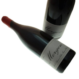 Marcel Lapierre Morgon red wine